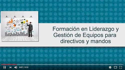 Curso de Liderazgo y Gestión de equipos en Pamplona (Navarra)