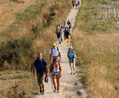 el-camino-santiago-peregrinos