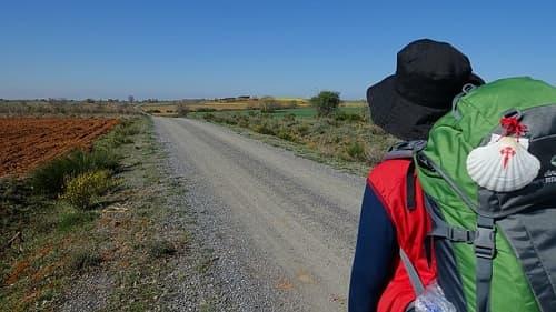 pergrino-camino-santiago