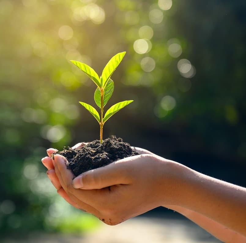 cmo-sabemos-si-somos-sostenibles